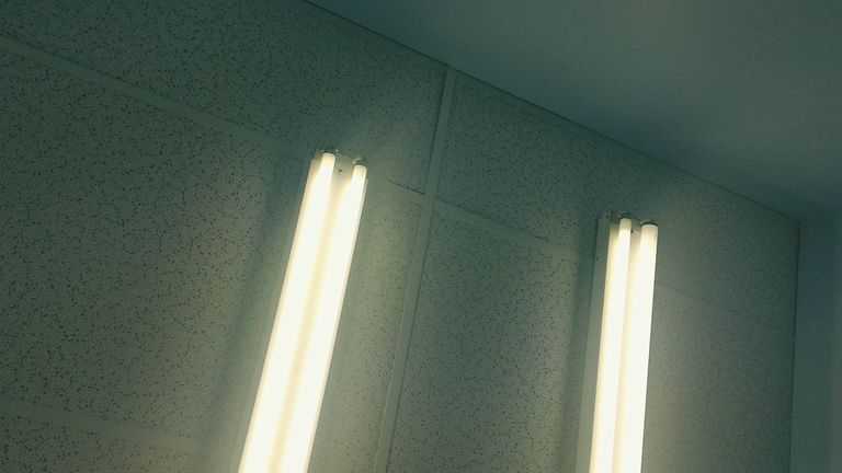 Fluorescent lights hung in an office ceiling.
