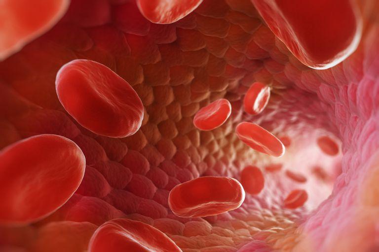 Como mejorar el riego sanguíneo