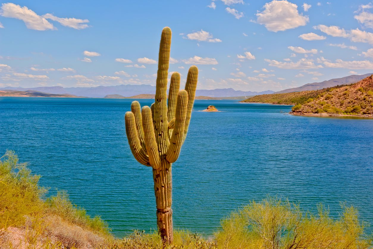 A guide to saguaro lake recreation near phoenix arizona for Saguaro lake fishing
