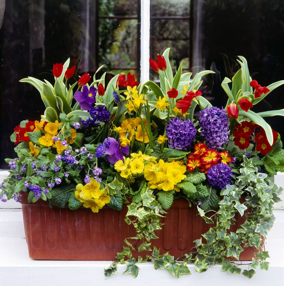 Spring Window Box