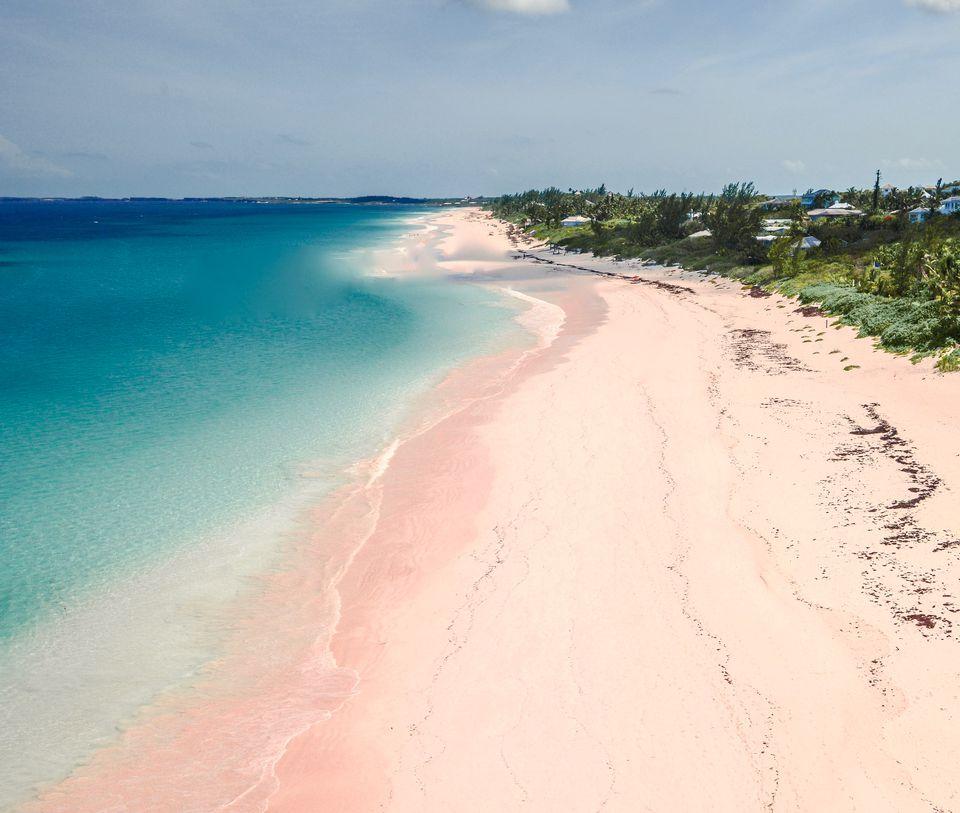 Pink sand beach on Harbour Island the Bahamas