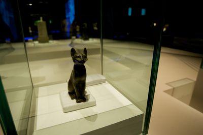 Apa Litha 2017 >> Prayers for a Deceased Pet Cat