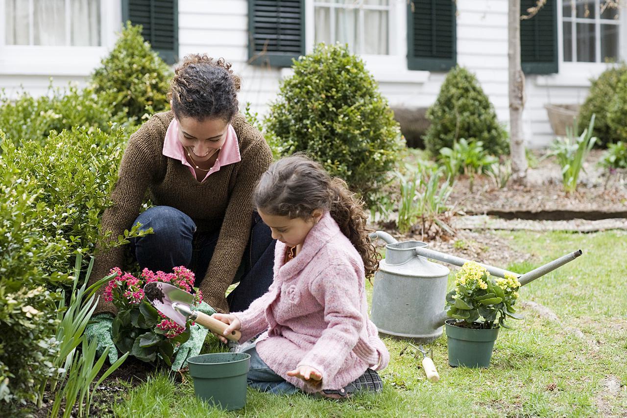 basics of how to start a garden from scratch