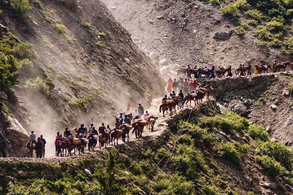 Ponies and pilgrims on Amarnath Yatra trail