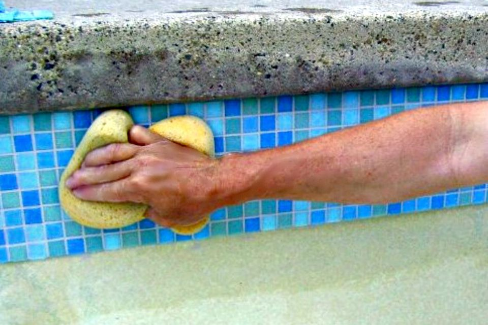 cleaning scale in pool