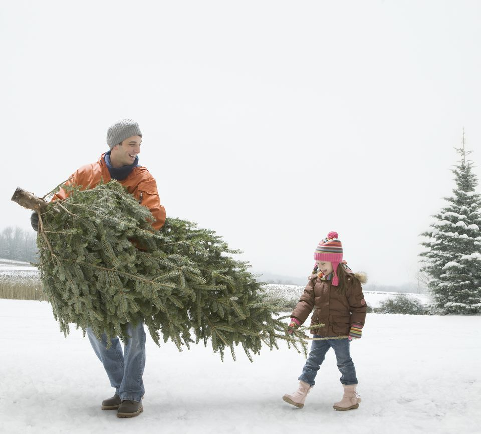 Man carrying Christmas tree with daughter in snow