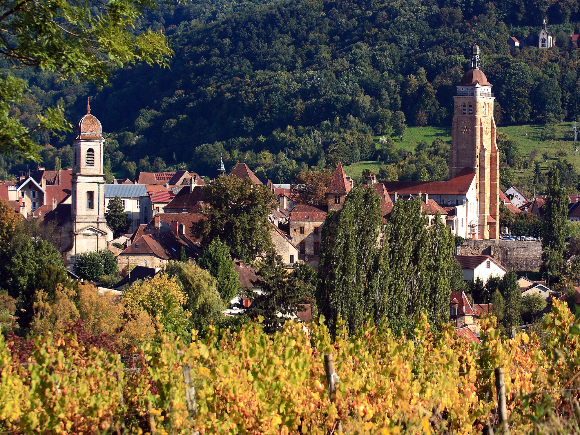 Charming Undiscovered Dole in the Jura Region