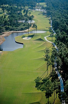 Aerial view of Fairway - Robert Cupp Golf Course at Palmetto Hall Plantation