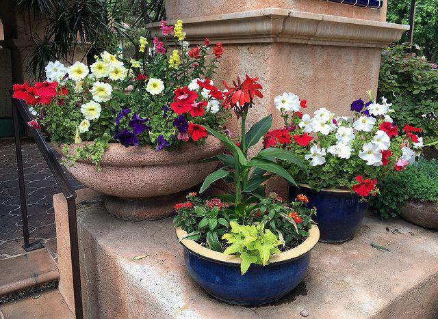 Sedona - Tlaquepaque Arts & Crafts Village - Potted Plants