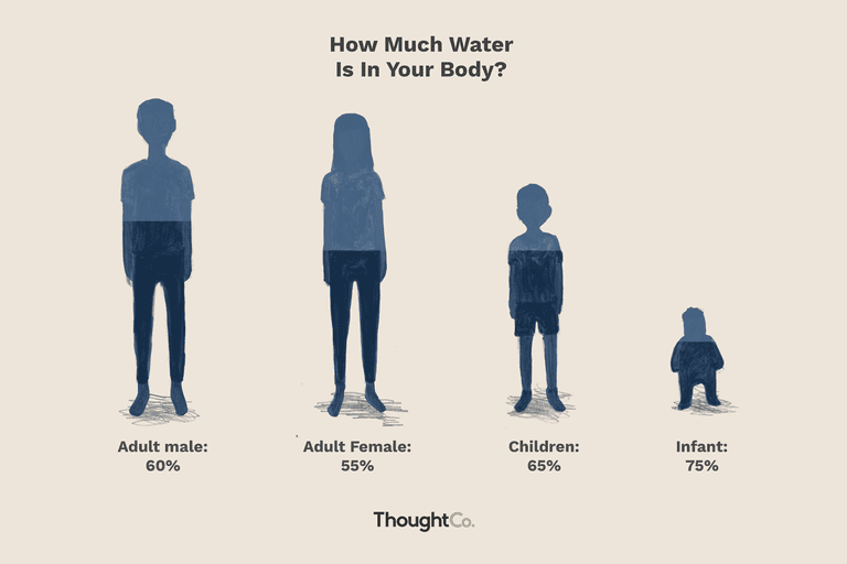 The amount of water in your body could be anywhere from 50-75%.