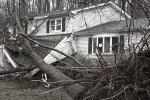 Tree fallen on house after storm