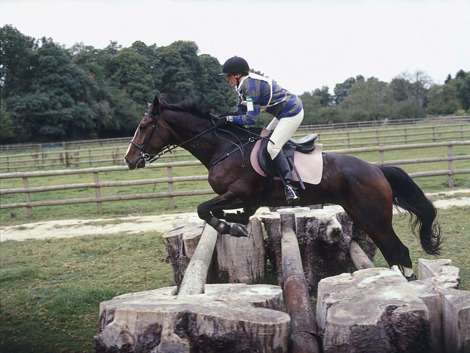 Horse and rider jumping over three horizontal logs set in stumps.