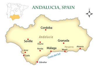See a Bullfight in Malaga Ronda or the Costa del Sol