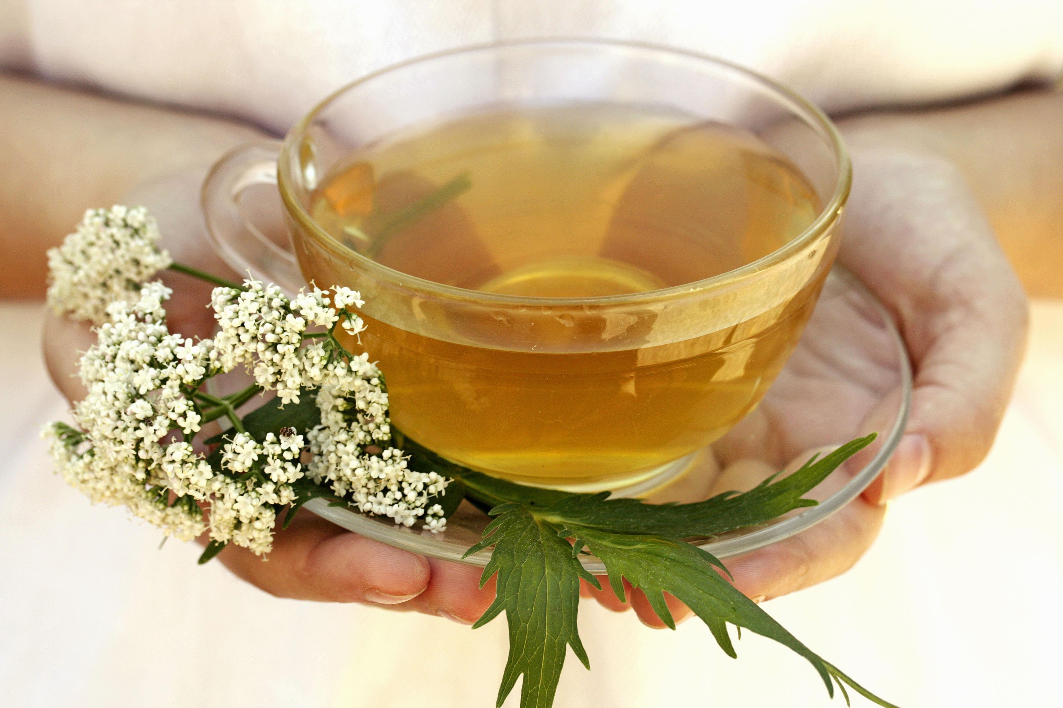Chinese herbal insomnia tea - Chinese Herbal Insomnia Tea 7