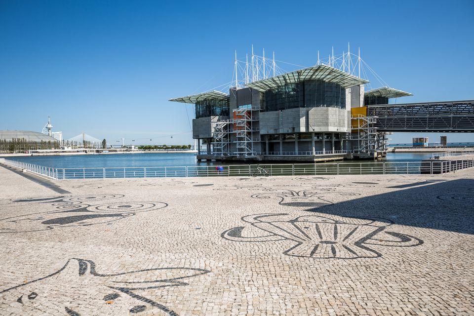 Oceanário de Lisboa, Lisbon, Portugal