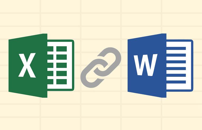 Microsoft Word & Excel