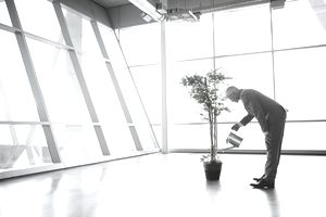 man watering a plant in a large empty room with many windows