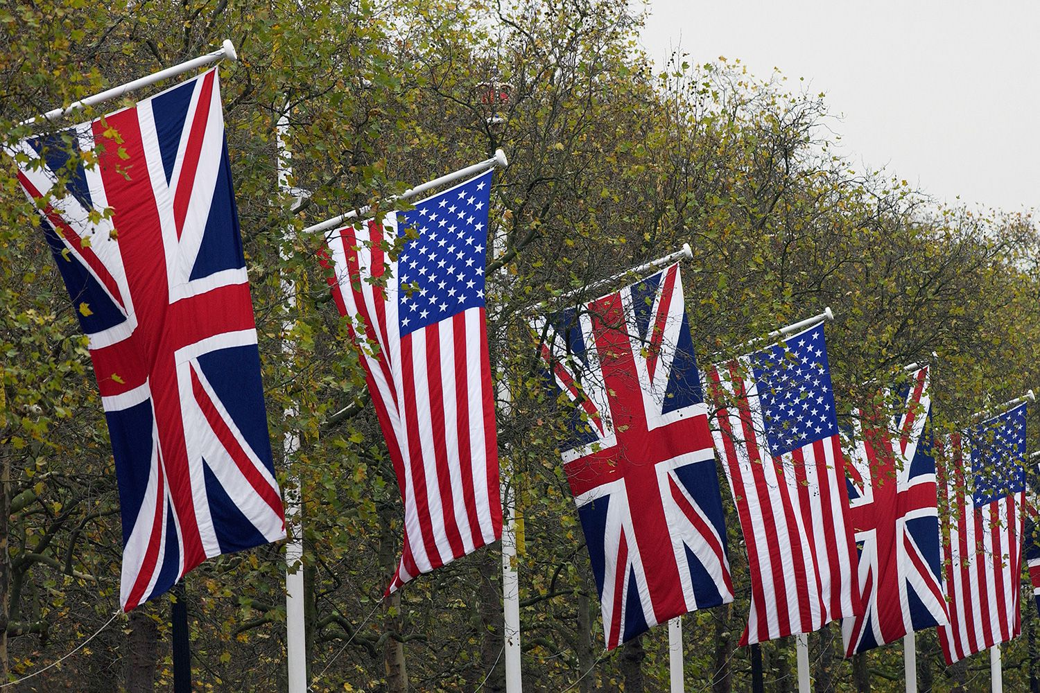 american and british english The main differences between american english grammar and british english grammar explained with examples.