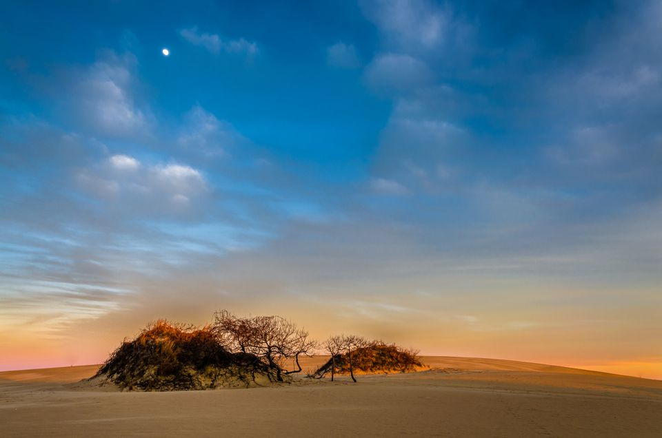 Jockey S Ridge Sand Dunes In North Carolina