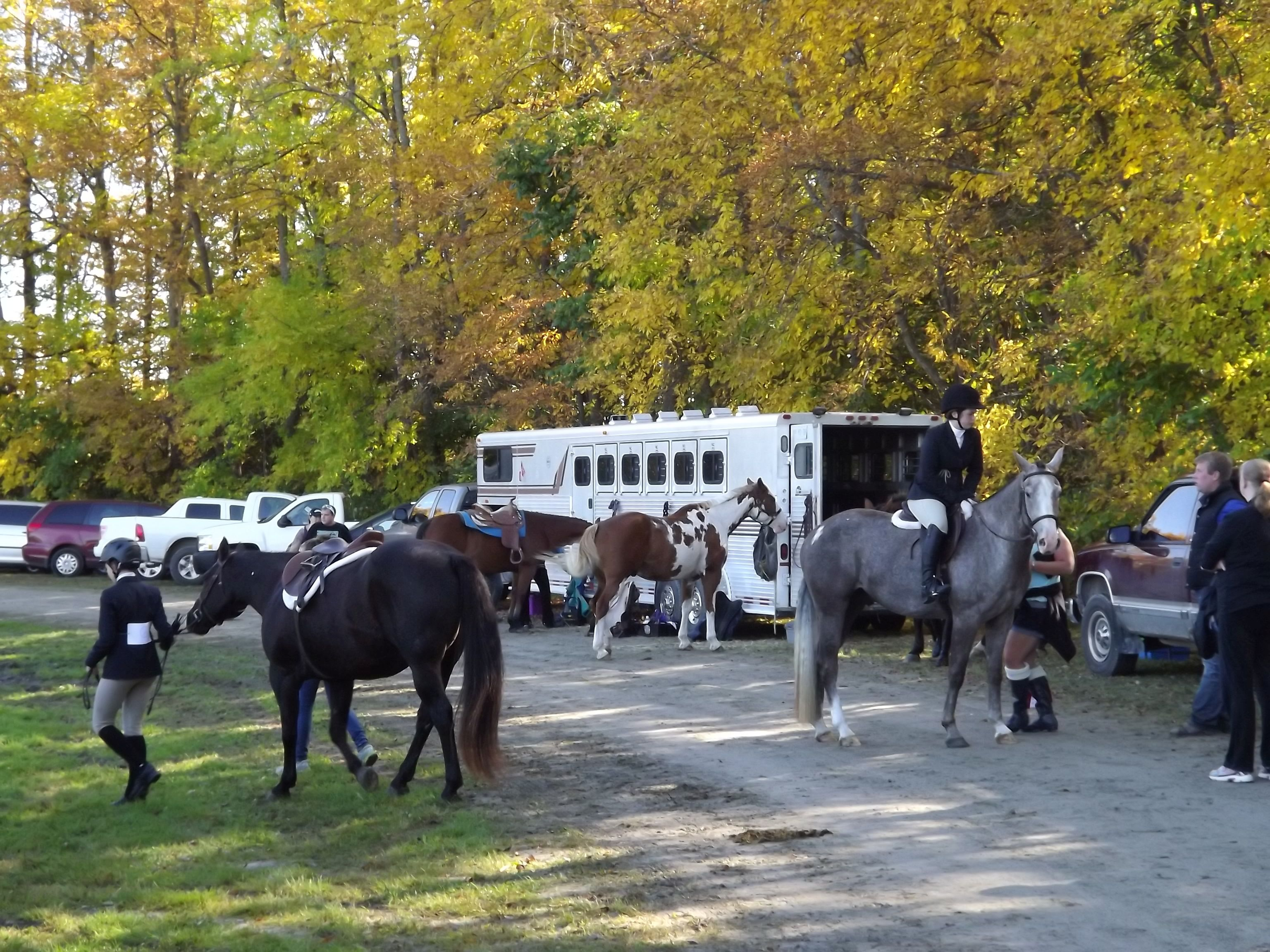 how to plan and hold a horse show