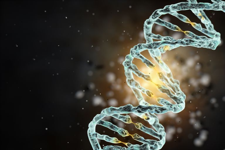 DNA or deoxyribonucleic acid is a cell's code for making proteins.