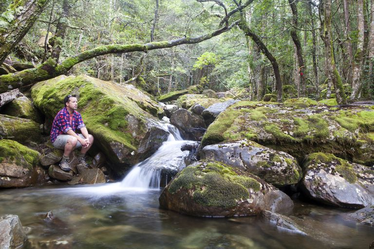 Smoko Creek, Great Western Tiers, Tasmania