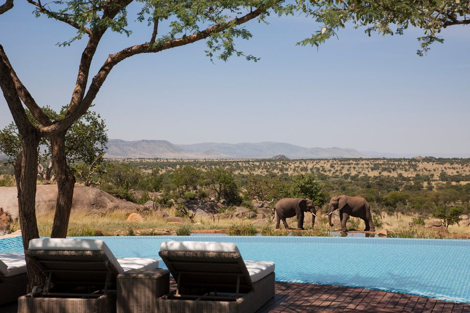 Different Accommodation Types Serengeti