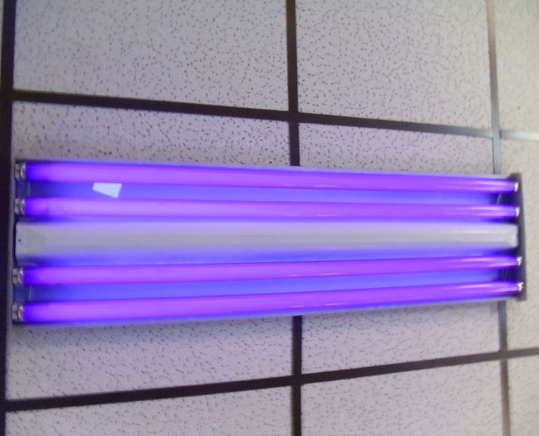 This is a photo of a typical fluorescent black or ultraviolet light.