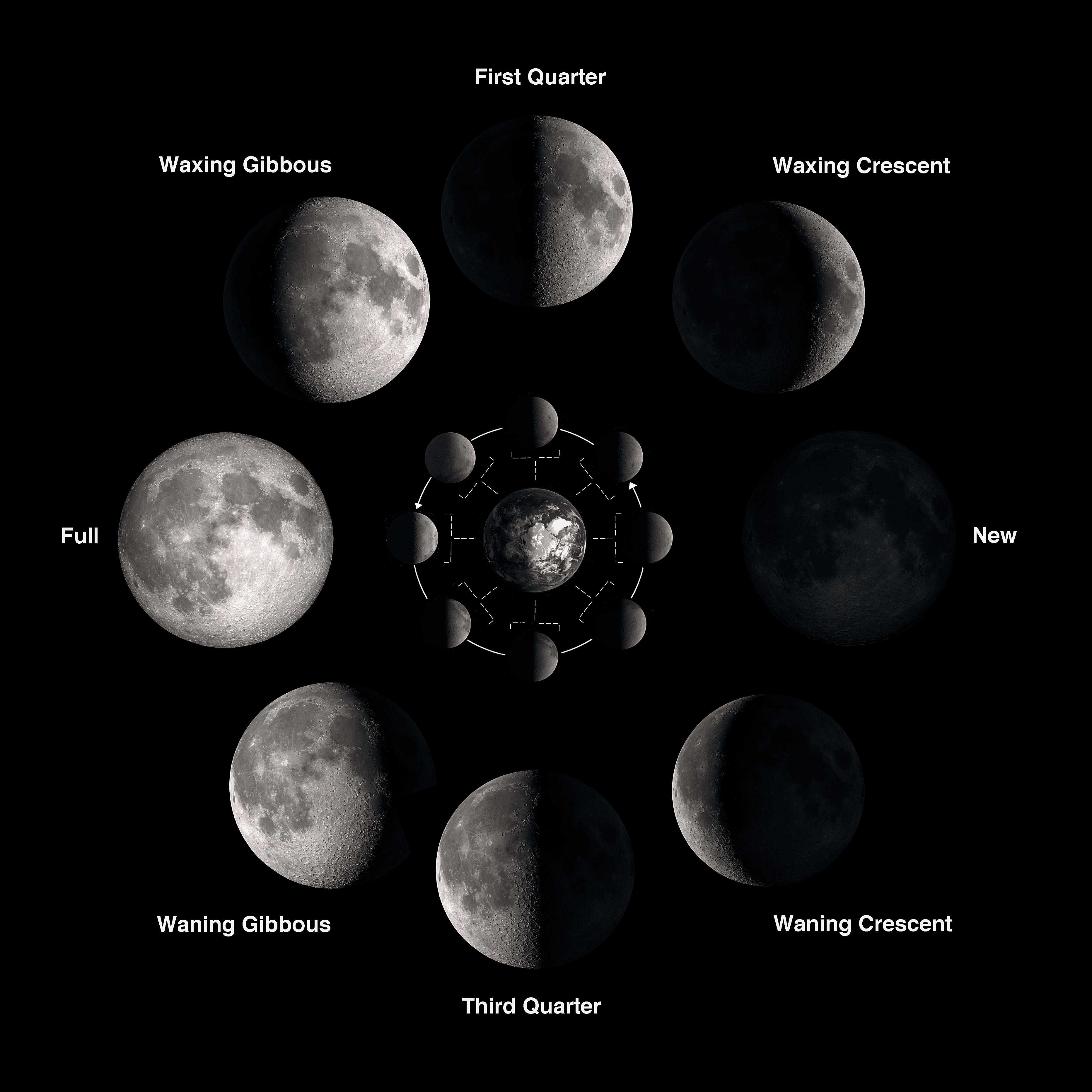 The phases of the moon explained pooptronica Choice Image