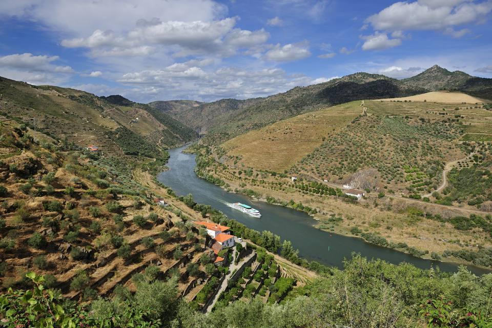 Douro river cruise