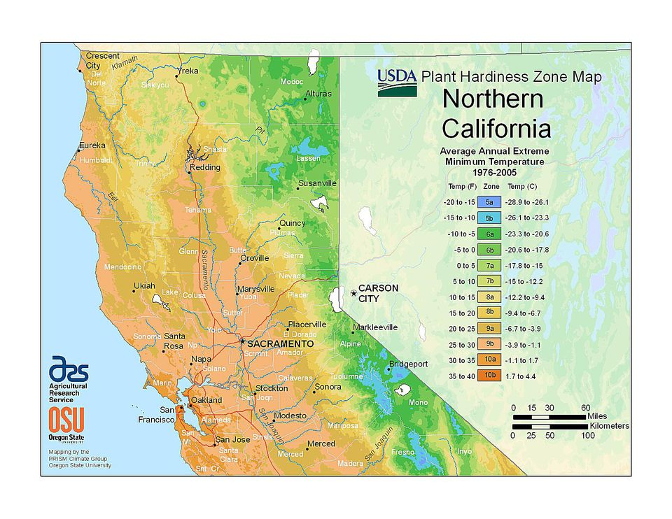 State maps of usda plant hardiness zones california north usda zone map photo of the northern california hardiness zones publicscrutiny Gallery
