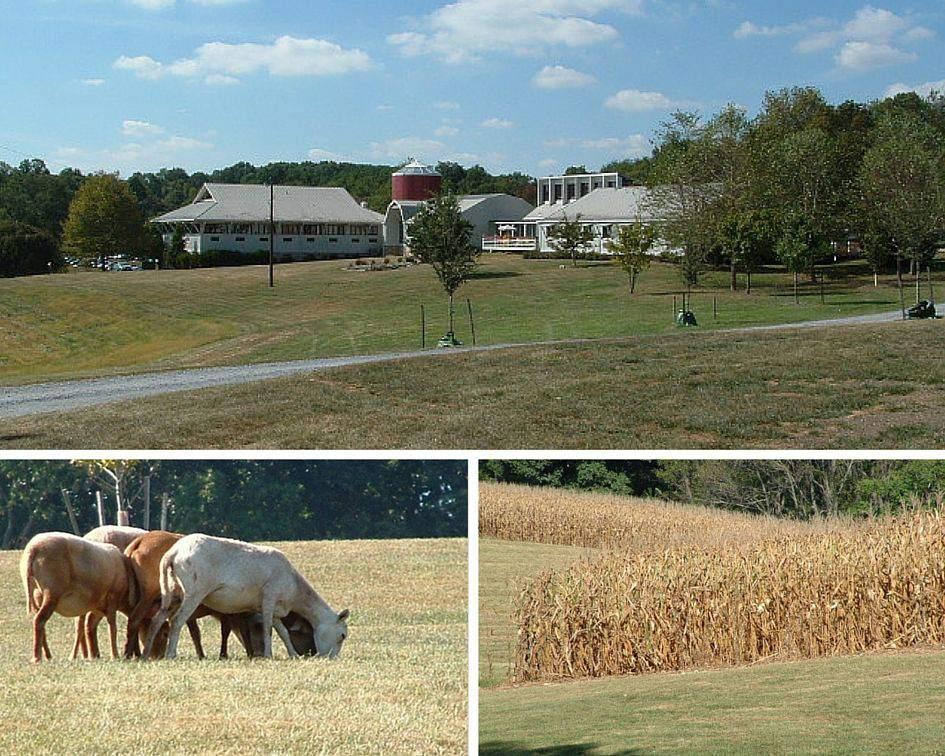 Agricultural History Farm Park