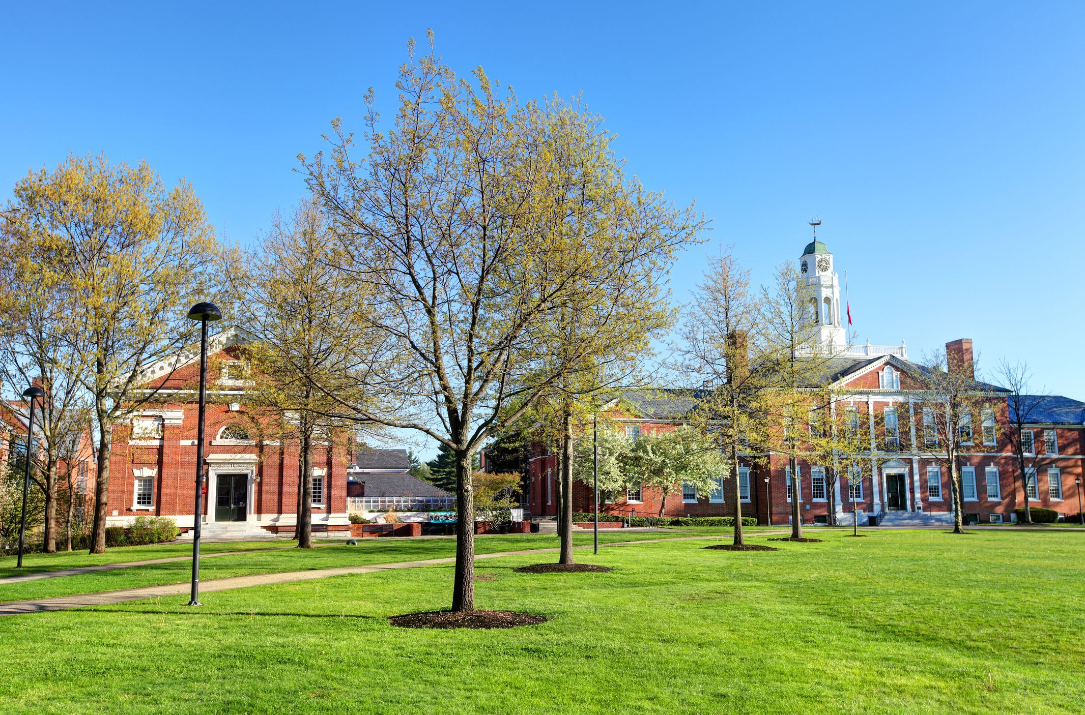 Admissions Data And Profile For Phillips Exeter Academy