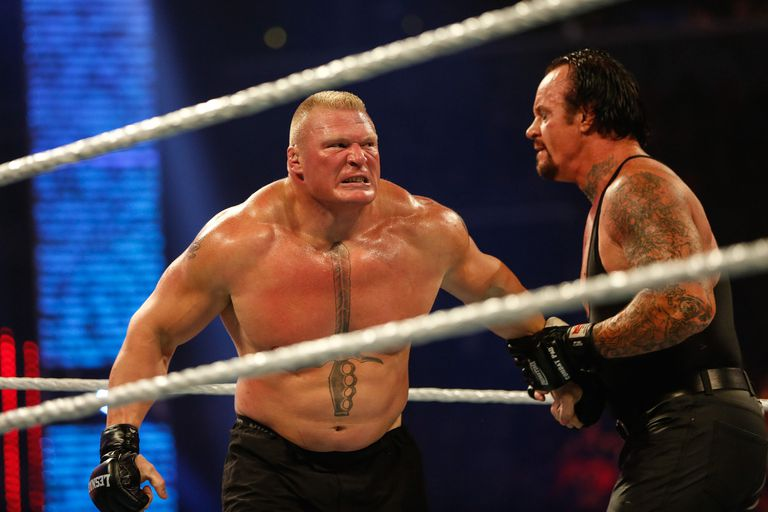 Brock Lesnar and Undertaker settled their differences at Hell in a Cell 2015.