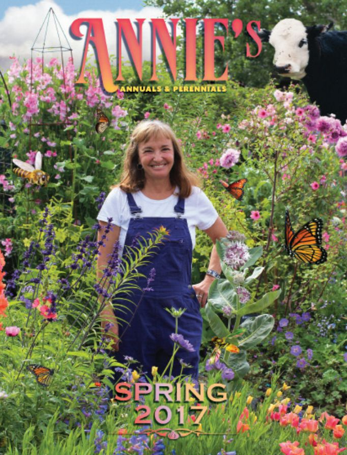 The cover of the Spring 2017 Annie's Annuals catalog