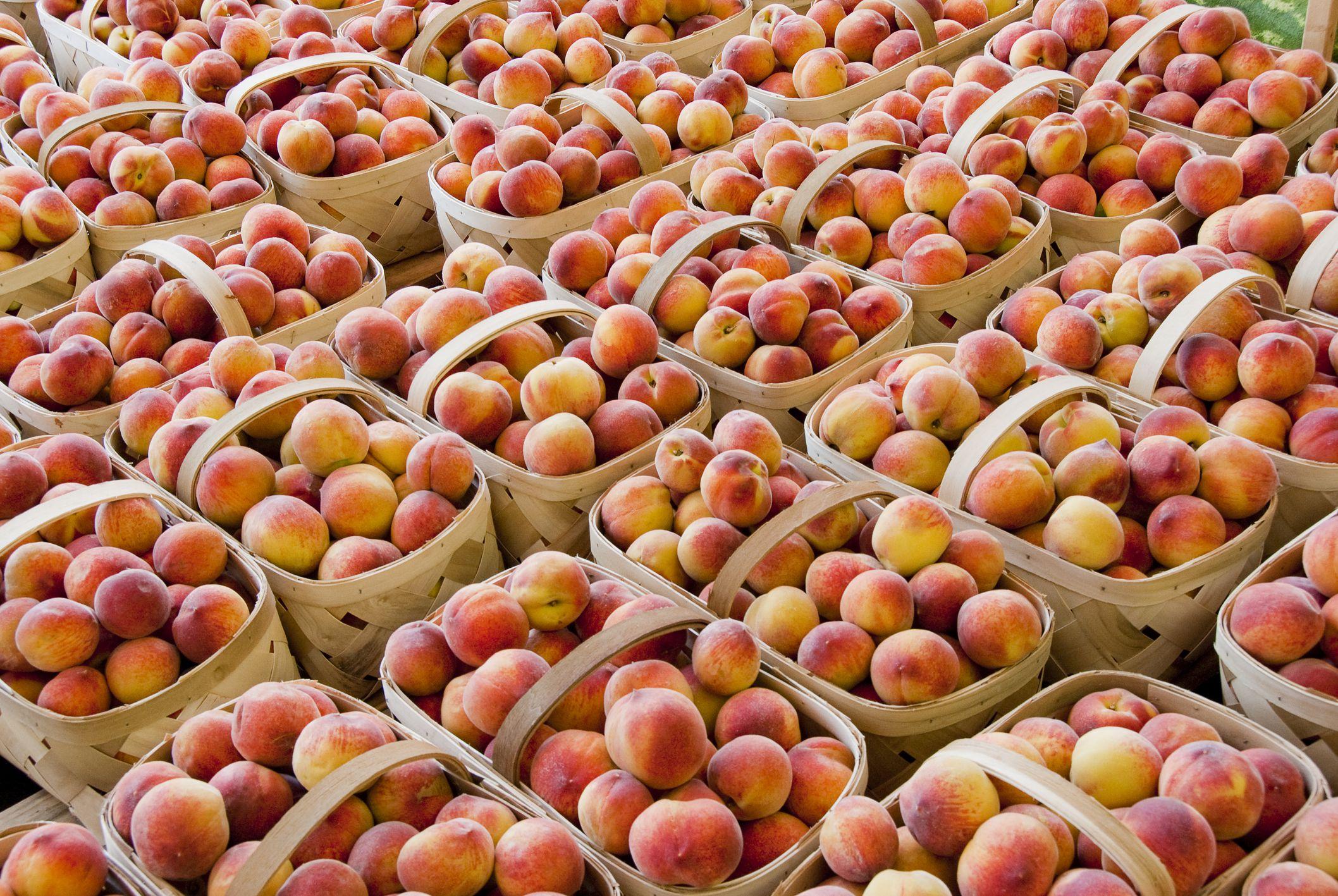 North Carolina Seasonal Fruits And Vegetables