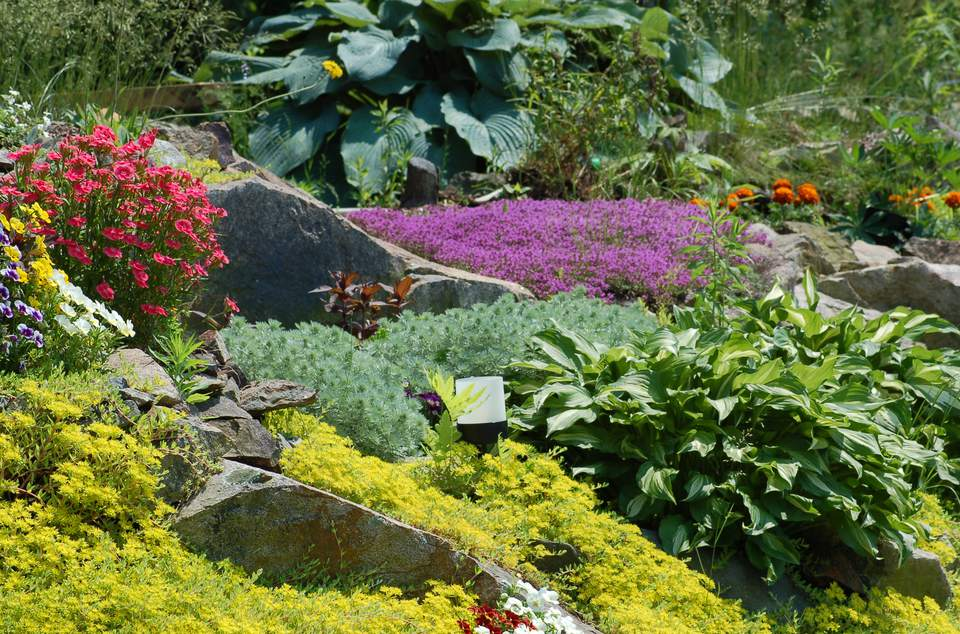 Image of a large, colorful rock garden in Maine, USA.