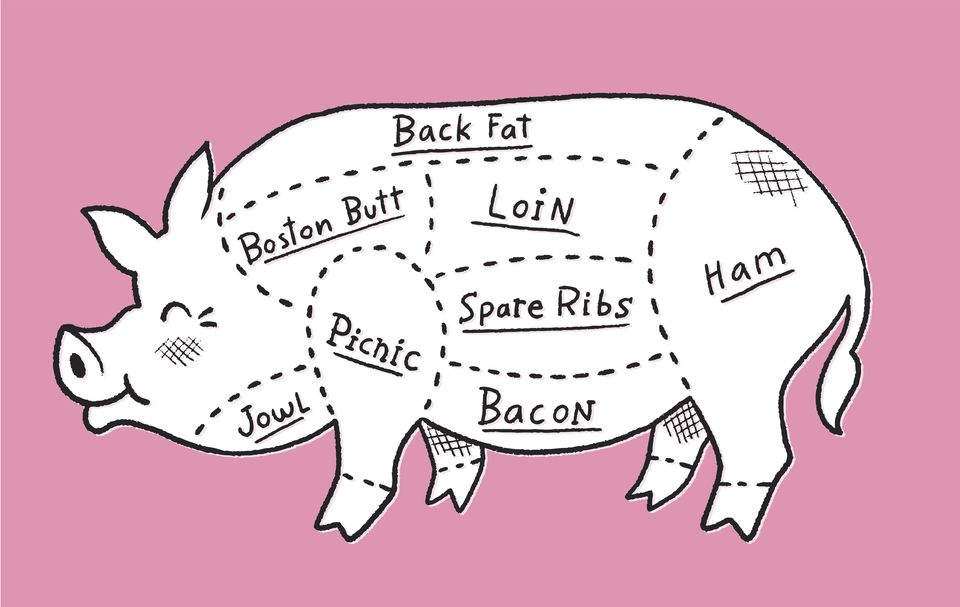 illustration of a pig with its meat cuts lined out