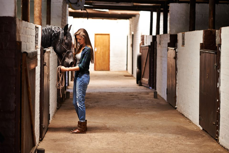 Taking a walk through the stables