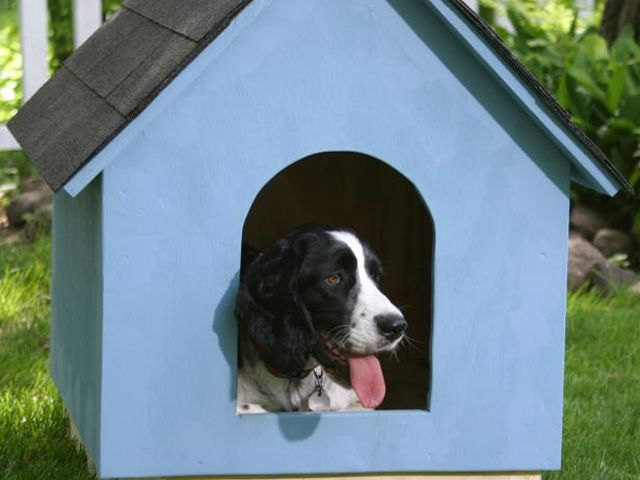15 Free Dog House Plans Anyone Can Build