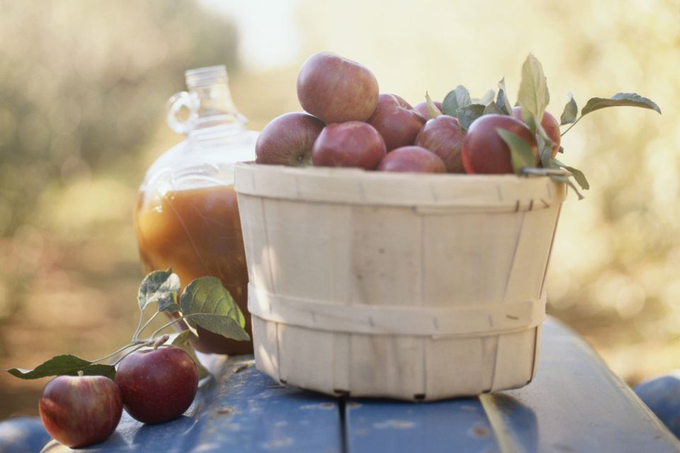 Apple Cider with Apples