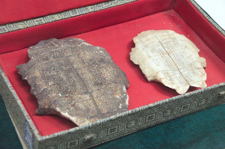 Shang Dynasty Oracle Bones, Yin Capital at Anyang