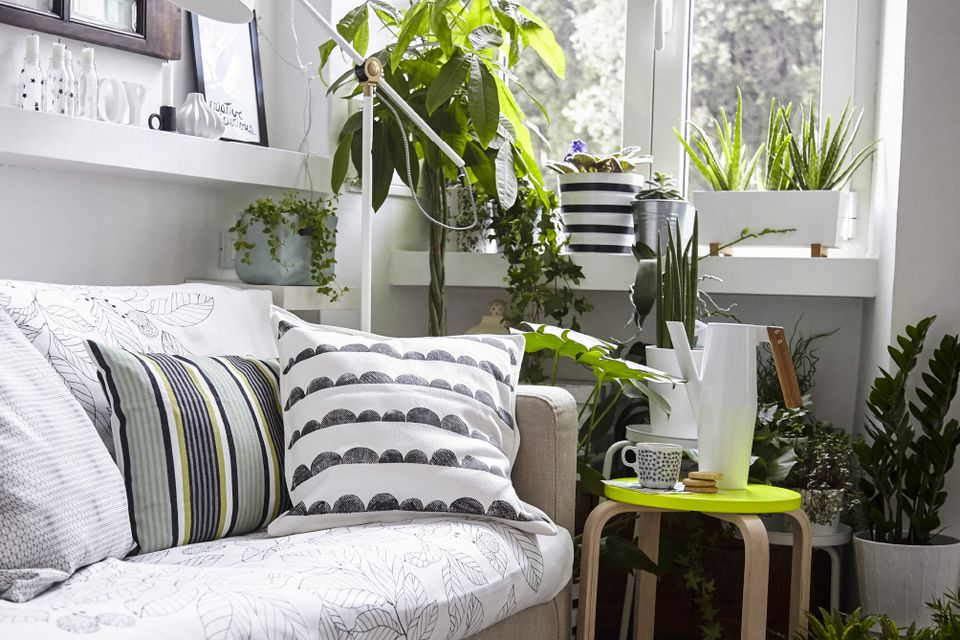 Living Room Corner Filled With Houseplants