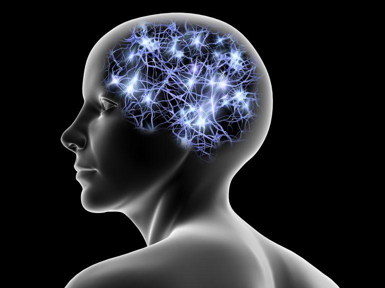 Brain working