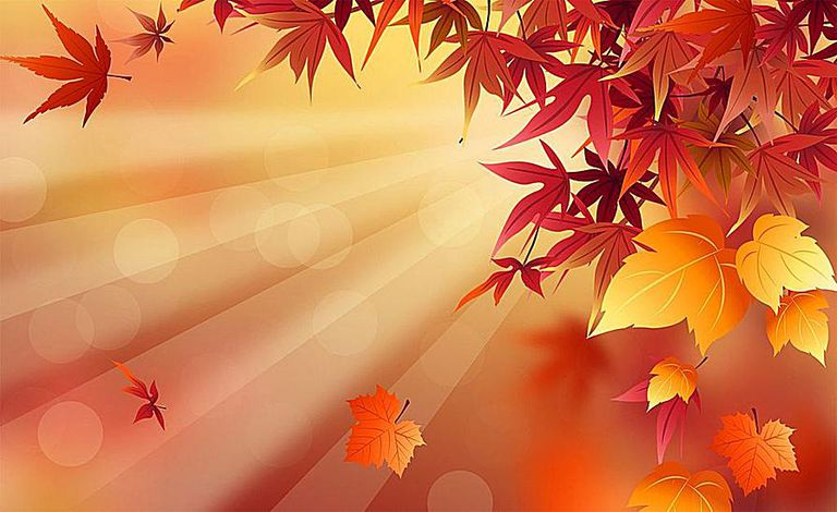 41 Free Fall Wallpapers and Backgrounds