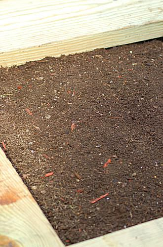 Photo showing the raised garden bed filled with filler, dirt and compost.