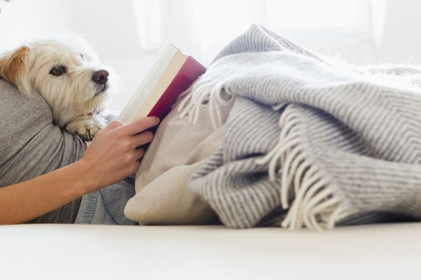 woman lying on bed reading a book with her doc
