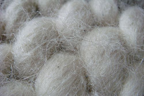 wool carpet pictures