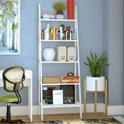 Ranie Ladder Bookcase