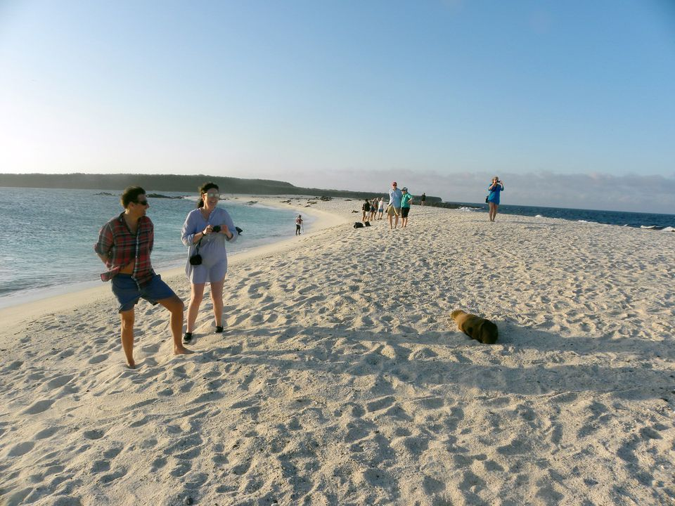 Galapagos Activities And Excursions On The Evolution - Galapagos vacations